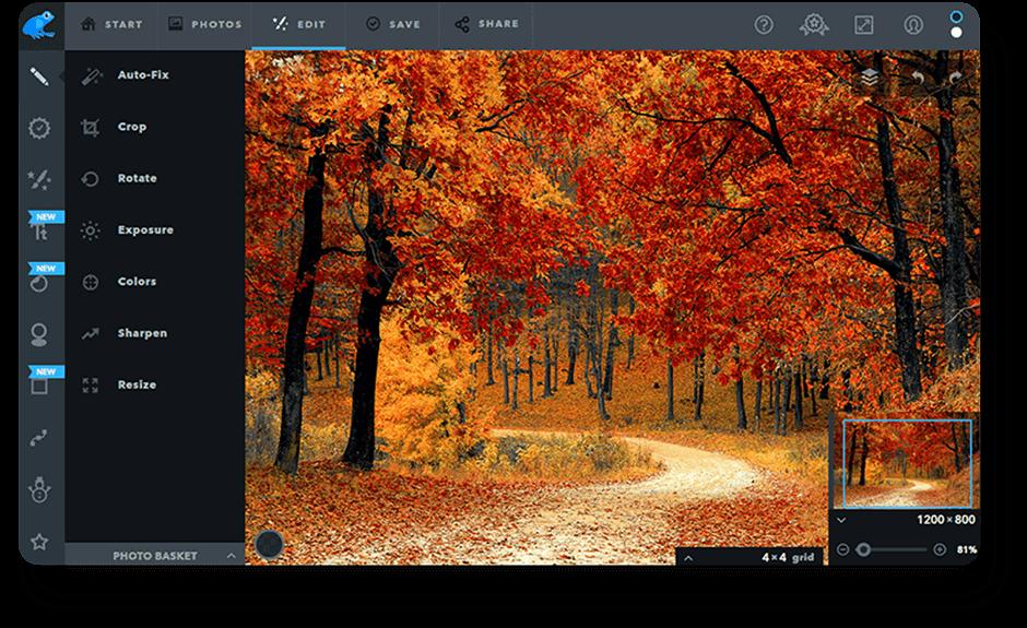 Ribbet | Photo Editor for Windows
